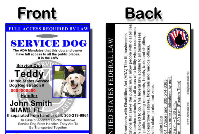Custom card template identification card template free card template samples and collection for Service dog id template