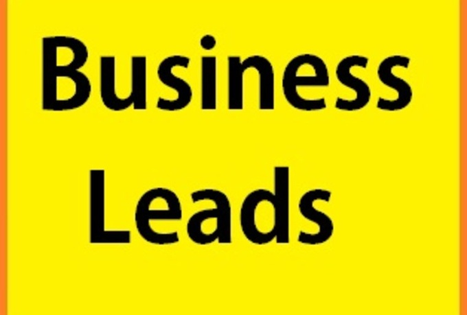 provide 100 to 300 targeted local business leads